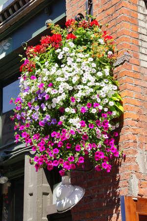 pioneer: Huge hanging flower baskets decorate  Pioneer Square,  Seattle, Washington