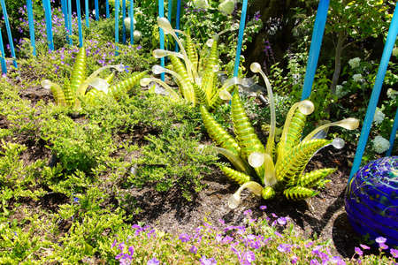 chihuly: SEATTLE - JUL 23, 2015 - Blown glass ferns in the  Chihuly Garden and Glass Museum,  Seattle, Washington Editorial