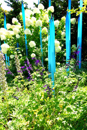 chihuly: SEATTLE - JUL 23, 2015 - Blue blown glass tubes rise among hydrangeas in the  Chihuly Garden and Glass Museum,  Seattle, Washington