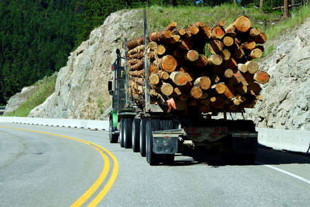 logging truck: Logging truck on mountain highway,   British Columbia, Canada