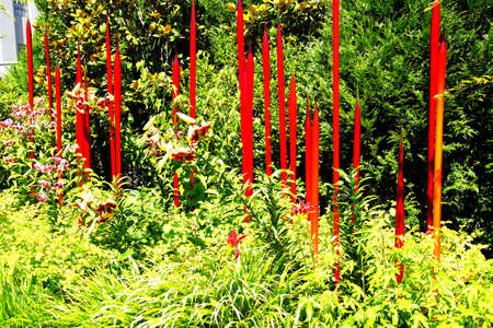 blown: SEATTLE - JUL 23, 2015 - Red blown glass tubes rise among lilies in the  Chihuly Garden and Glass Museum,  Seattle, Washington
