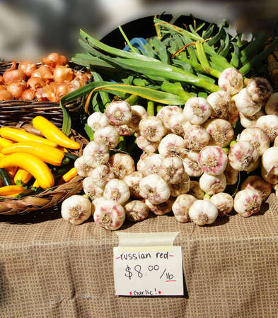 Spring garlic, onions and yellow squash at the  Saturday Market,  Penticton, British Columbia, Canada Stock fotó - 44626480