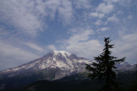 icefall: South face and glaciers of Mt. Rainier, with conifer forest,Mount Rainier National Park