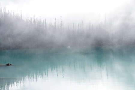 Morning mist rising from conifer forest and turquoise lake, Joffre Lakes Provincial Park, British Columbia, Canada Banco de Imagens - 47755719
