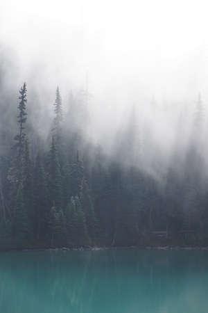 朝の霧が針葉樹林とターコイズ湖、ジョッフル湖州立公園、ブリティッシュ ・ コロンビア、カナダからの立ち上がり 写真素材 - 47875768