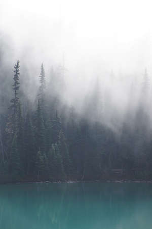 Morning mist rising from conifer forest and turquoise lake, Joffre Lakes Provincial Park, British Columbia, Canada