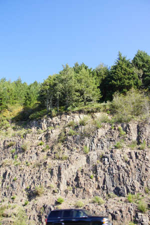 cut through: Road cut through hill of conifer forest near Seaside, Oregon coast