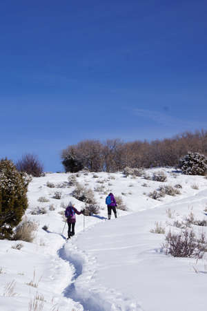 snowshoe: Snowshoe hikers ascend a hill in the mountains of  Colorado Stock Photo