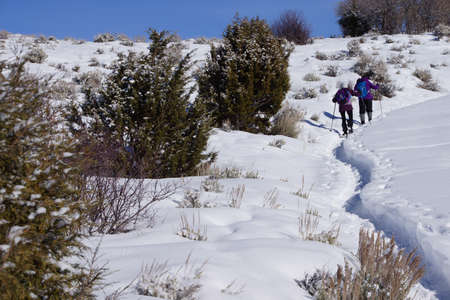 ascend: Snowshoe hikers ascend a hill in the mountains of  Colorado Stock Photo