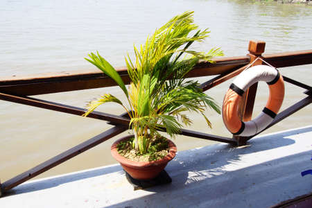 mekong river: Small palm decorates the deck of a cruise ship on the  Mekong River,  Vietnam