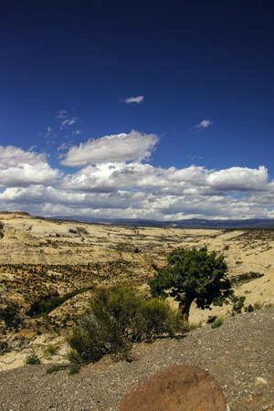 escalante: Badlands and sandstone canyons of Escalante Staircase National Monument, Utah