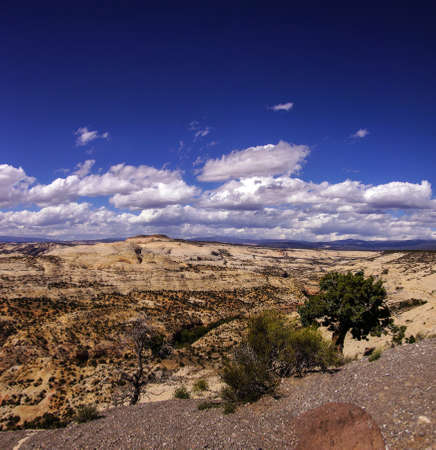 canyons: Badlands and sandstone canyons of Escalante Staircase National Monument, Utah