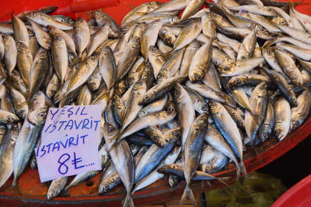 weekly market: Istavrit (Horse mackerel)  at the weekly market  in Canakkale,  Turkey Stock Photo