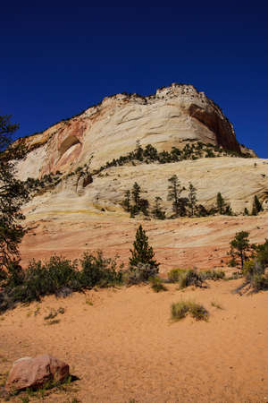 fossilized: Cross current layers of colored sandstone, created from fossilized dunes and shifting winds over millions of years, Zion National Park, Utah