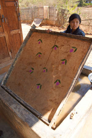 INLE LAKE, MYANMAR - FEB 28, 2015 - Young woman makes mulberry paper with embedded flowers, near Inle Lake Myanmar (Burma)