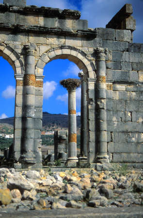 roman columns: Ancient Roman columns with stork nests in the abandoned city of Volubilis, Morocco Stock Photo