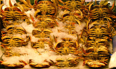 pike place: Dungeness crab for sale  at the Pike Place Public Market , Seattle Stock Photo
