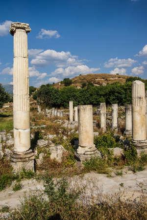 Ancient agora with Dorian  columns of  Aphrodisias,  Turkey