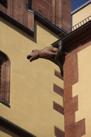 gargouille: Gargoyle on rainspout of medieval house in  Wertheim, Germany Banque d'images