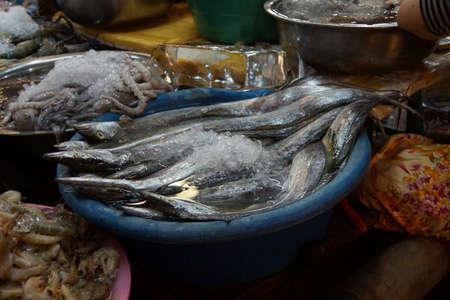 Selling eels  in the market of  Siem Reap,  Cambodia