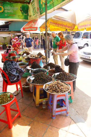 tarantula: SKOUN, CAMBODIA - FEB 9, 2015 - Woman selling deep fried tarantula spiders and other insects to tourist,   Cambodia
