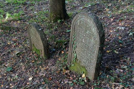wertheim: WERTHEIM, GERMANY - SEP 13, 2016 - Headstones in ancient Jewish cemetery,  Wertheim, Germany Editorial