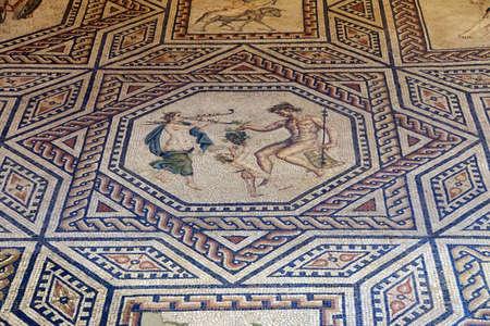 germanic: COLOGNE, GERMANY - SEP 15, 2016 - Ancient Roman Dionysus mosaic floor,  Roman - Germanic Museum,  Cologne, Germany
