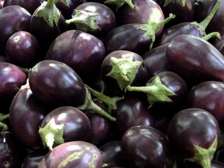 weekly market: Eggplants   for sale in weekly market  in Orissa,   , India