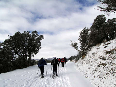 Large group of showshoers hike up a snow covered road on Horse Mountain, Colorado Stock Photo