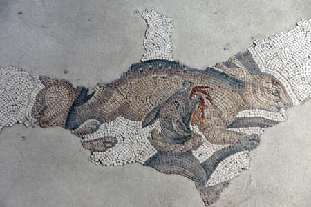 capturing: ISTANBUL, TURKEY - MAY 16, 2014 - Hunting dogs capturing a rabbit, mosaic scene, Great Palace Mosaic Museum,  in Istanbul, Turkey