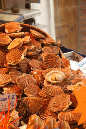 rue: Fresh scallops or coquilles in their shells  in a seafood market on Rue Mouffetard, Paris, France