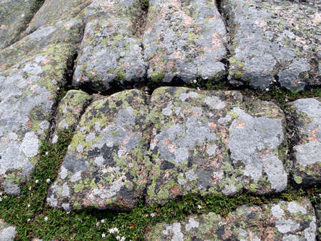 Pink granite boulders with grey, black and blue lichens on summit of Cadillac Mountain,Mount Desert Island, Acadia National park, Maine, New England
