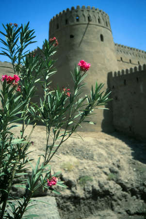 Outer walls of medieval city and fortress,Bam, Iran, Middle East Stock Photo