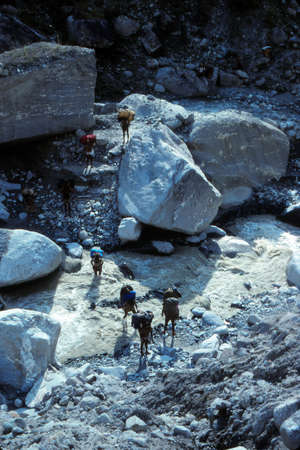 ARUN VALLEY, NEPAL - OCT 17, 1987 - Porters carrying loads across river,Arun Valley,  Himalyas, Asia Editorial
