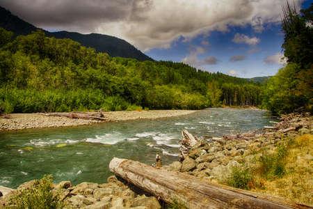Drijfhout op de Elwha-rivier in het Olympisch Nationaal Park, Washington