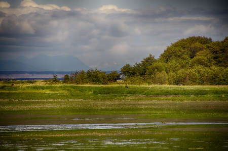 Wetlands of Dungeness Wildlife Refuge with Olympic mountains in background, Sequim, Washington Stock Photo