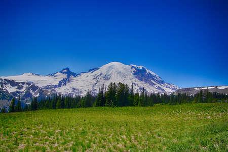 Emmons Glacier on the east slopes of Mount Rainier, National Park, Washington Stock Photo