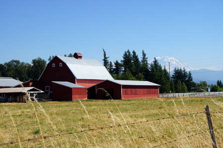 Red barn with Mount Rainier in the background, near Enumclaw, Washington Stock Photo
