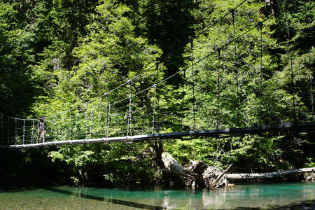 OHANAPECOSH, WASHINGTON - JUL 25, 20217 - Hiker crosses the suspension bridge leading to the Grove of the patriarchs, Ohanapecosh, Mount Rainier National Park, Washington