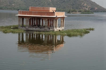 Cormorants on a lake near  Jaipur, Rajasthan, India Stock Photo