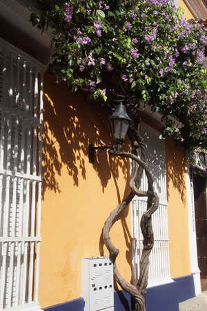 Yellow ochre colonial building with tree and flowers, Cartagena, Colombia Stock Photo