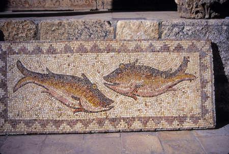 Romeinse mozaïeken van vis gevonden in de buurt van Ma'araat Numan, Syrië Redactioneel