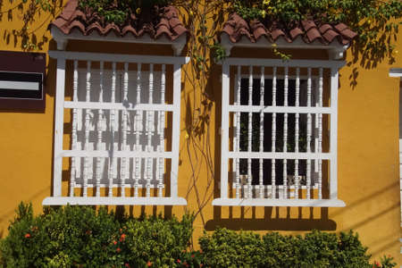 Ochre colonial building with tree and flowers, Cartagena, Colombia