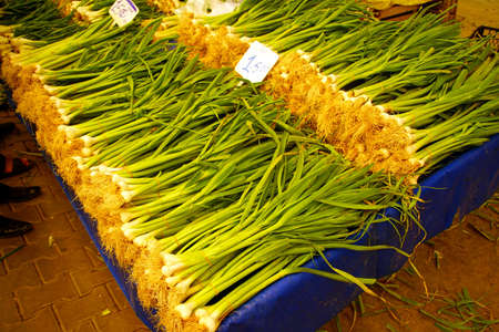 Green spring onions  in central market of Canakkale, Turkey Stock Photo