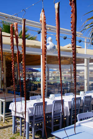 Fresh octopus tentacles at a seaside restaurant in Bozcaada, Turkey