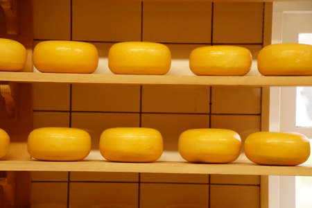 Cheese processing in Zaanse Schans.