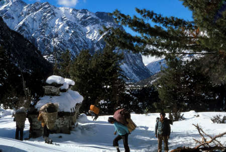 ANNAPURNA HIMAL, NEPAL - DEC 28, 1977 - Nepalese porters   on snowy trail in the Annapurna Himal in Nepal