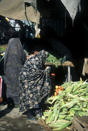 Veiled woman buying corn in marketplace, Kerman, Iran, Middle East