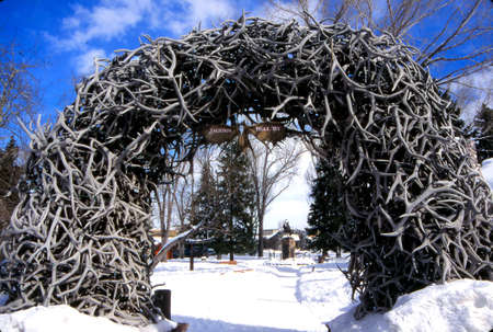 Arch of antlers naturally shed by elk, Jackson, Wyoming