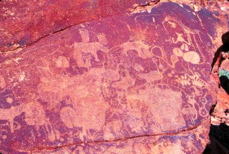Prehistoric carvings  (petroglyphs)  on boulder near Twyfelfontein,  Namibia JUL 1995 -